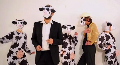La vache en colère (2)