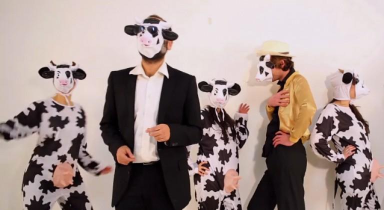 Vache en colère: le clip !