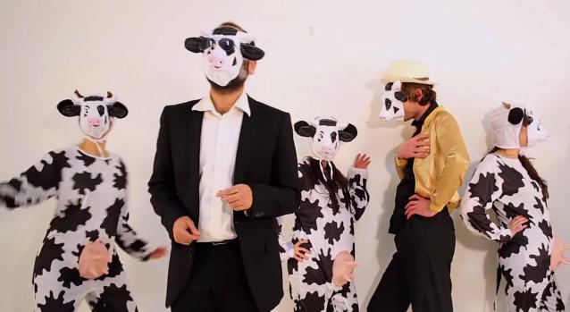 La vache en colère !