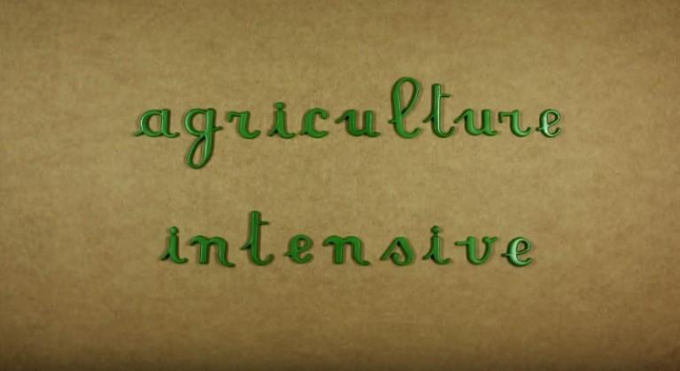 Agriculture intensive, oui mais en quoi ?